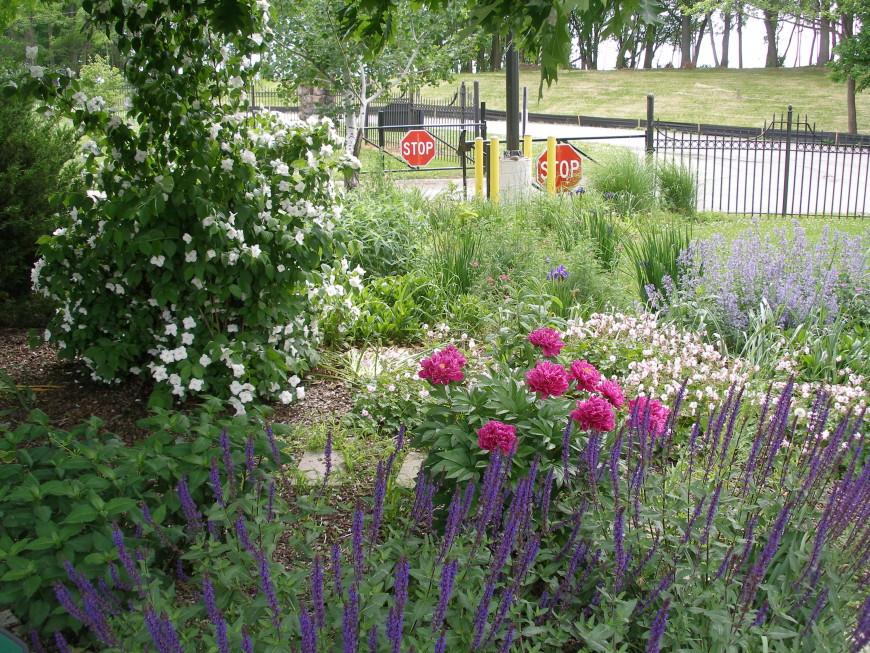 The Welcome Garden